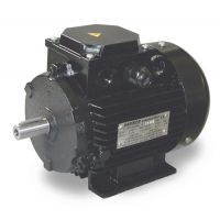 Електродвигател с лапи GIS s.n.c. di G. Sgarbi /3.0 kW, 400 V/