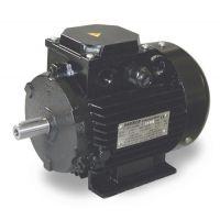 Електродвигател с лапи GIS s.n.c. di G. Sgarbi /4.0 kW, 400 V/